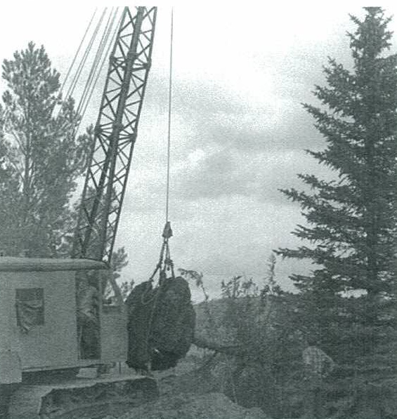 Saratoga_Tree_Moving_Project