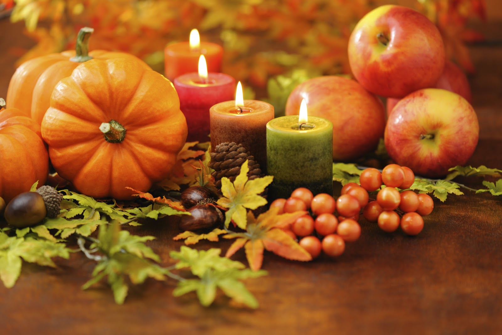 happy thanksgiving from saratoga resort and spa